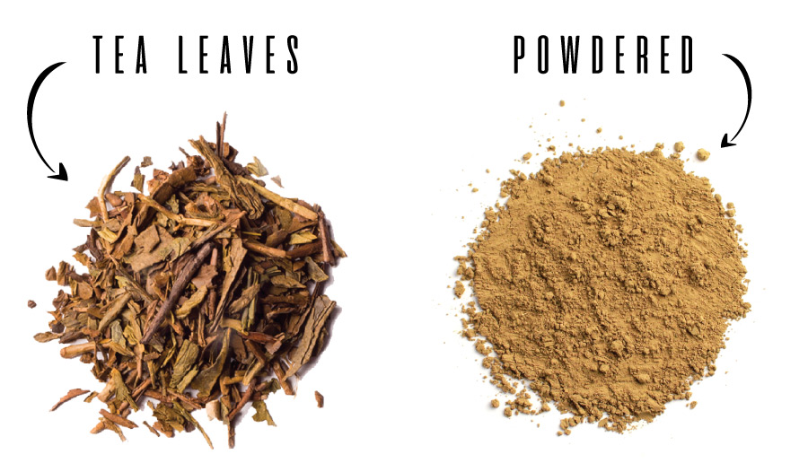 Hojicha Leaves vs Powdered format