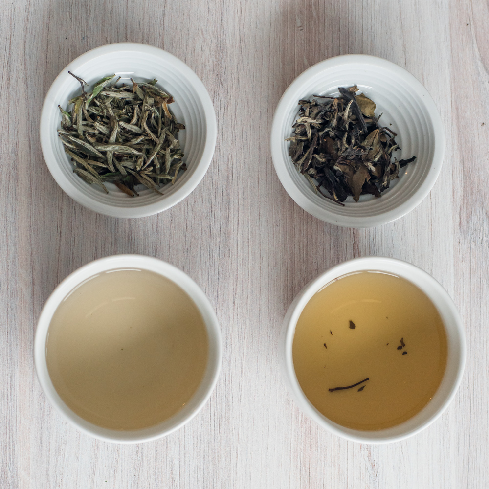 Caffeine in White Tea - Comparing white tea